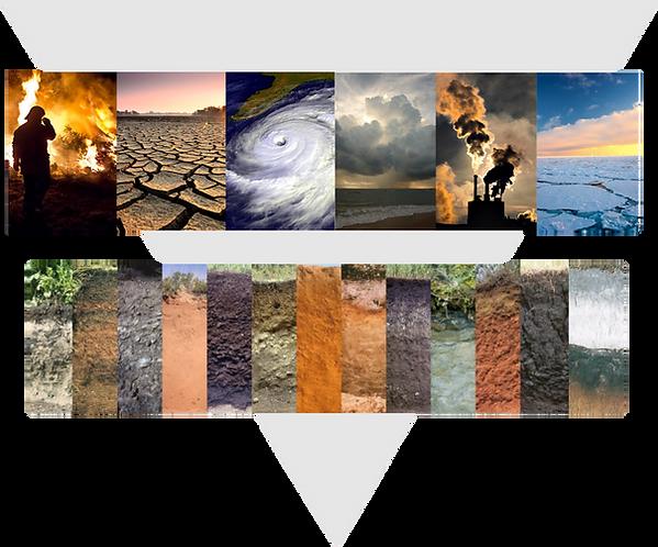 Soil profiles.png
