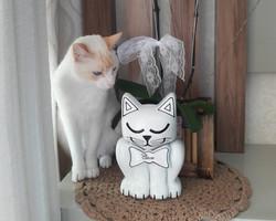 Pet Memory Keepsake with Cat