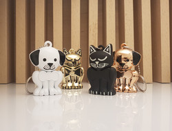 Pet Memory Keepsake Keychains