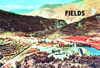 standart thinking fields.jpg