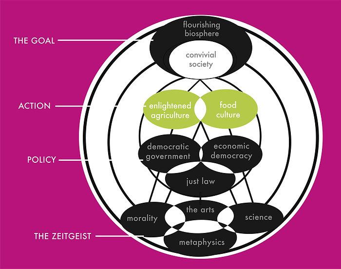 college diagram second versuion 1.jpg