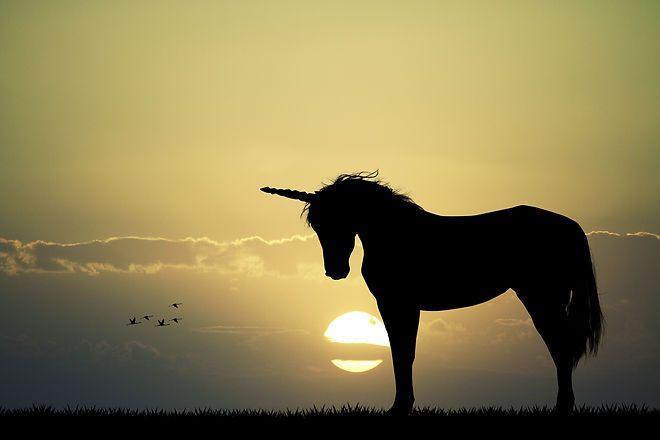 Unicorn over the setting sun.jpeg