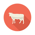 Taste-Icons-Cow.png