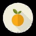Taste-Icon-Orange.png