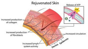Rejuvinated skin in Irvine & Newport Beach