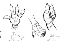 Bird Hand Practice