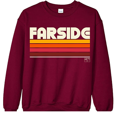 FS WEBSITE SWEATER.png