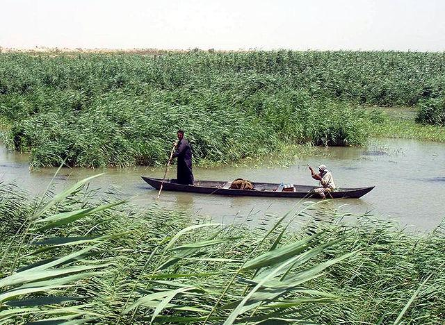 Iraq's Marshes Gain Heritage Status
