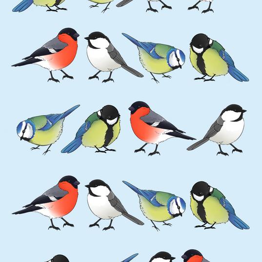 Little birds