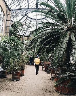 My favorite botanical garden in Amsterda
