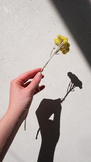 Hand_flower3.JPG