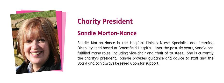 Sandie MortonNance Board web profile.jpg