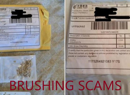 Securing Our Communities: Brushing Scams