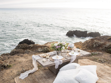 30th Birthday Surprise: Bodega Bay Picnic