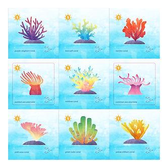 Coral art-01.jpg