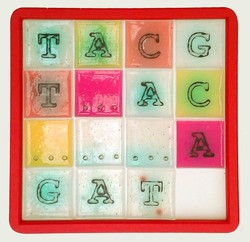 Genome Game (2)