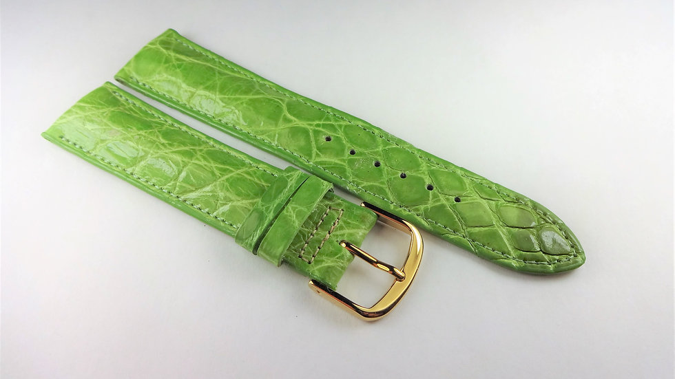 Paul Picot 20mm Green Genuine Crocodile