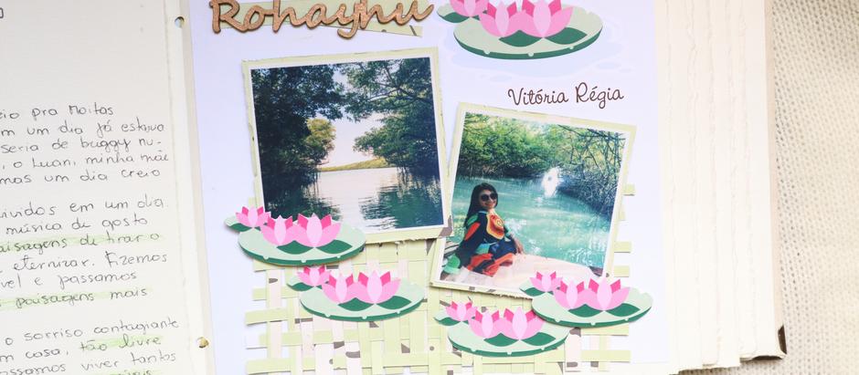"""Layout do """"álbum/diário de viagem Vitória Régia""""."""
