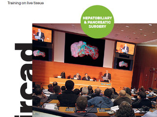 New Perspectives in Hepatobiliary and Pancreatic Surgery