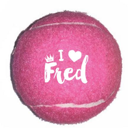 Pet / Tennis Ball