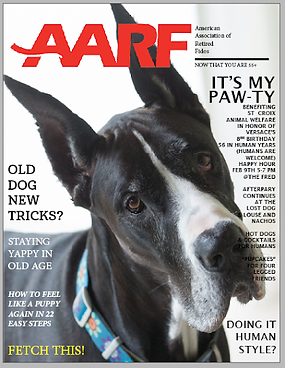 AARF Magazine Cover.png