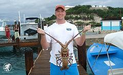 Caribbean-Lobster-Staniel-Cay.jpg