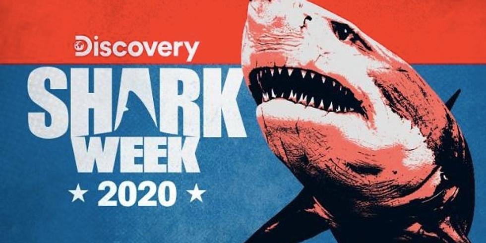 Sharkadelic Summer