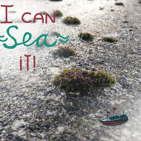 I can sea it