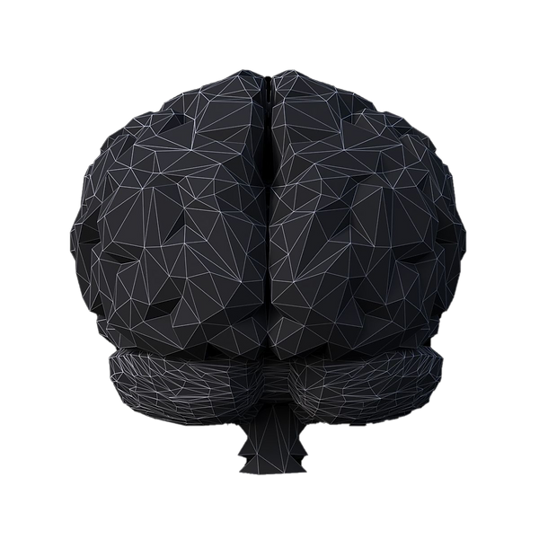low-poly-brain-3d-model-low-poly-max-obj