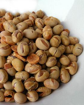 Soy_Nuts_Web.jpg