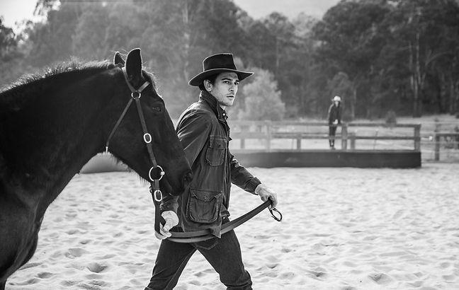OO_WV_Lifestyle_Horses_Arena_Him_2418.jp