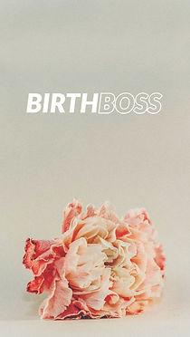HBP Birth Boss.jpg