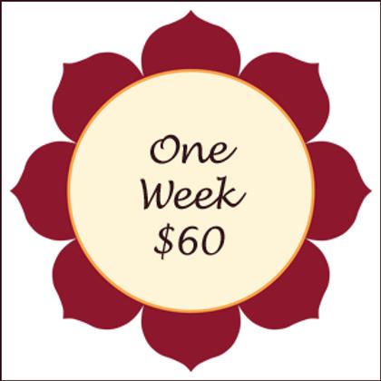 1 Week Unlimited