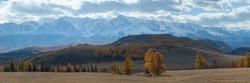 Северо-Чуйский осенью