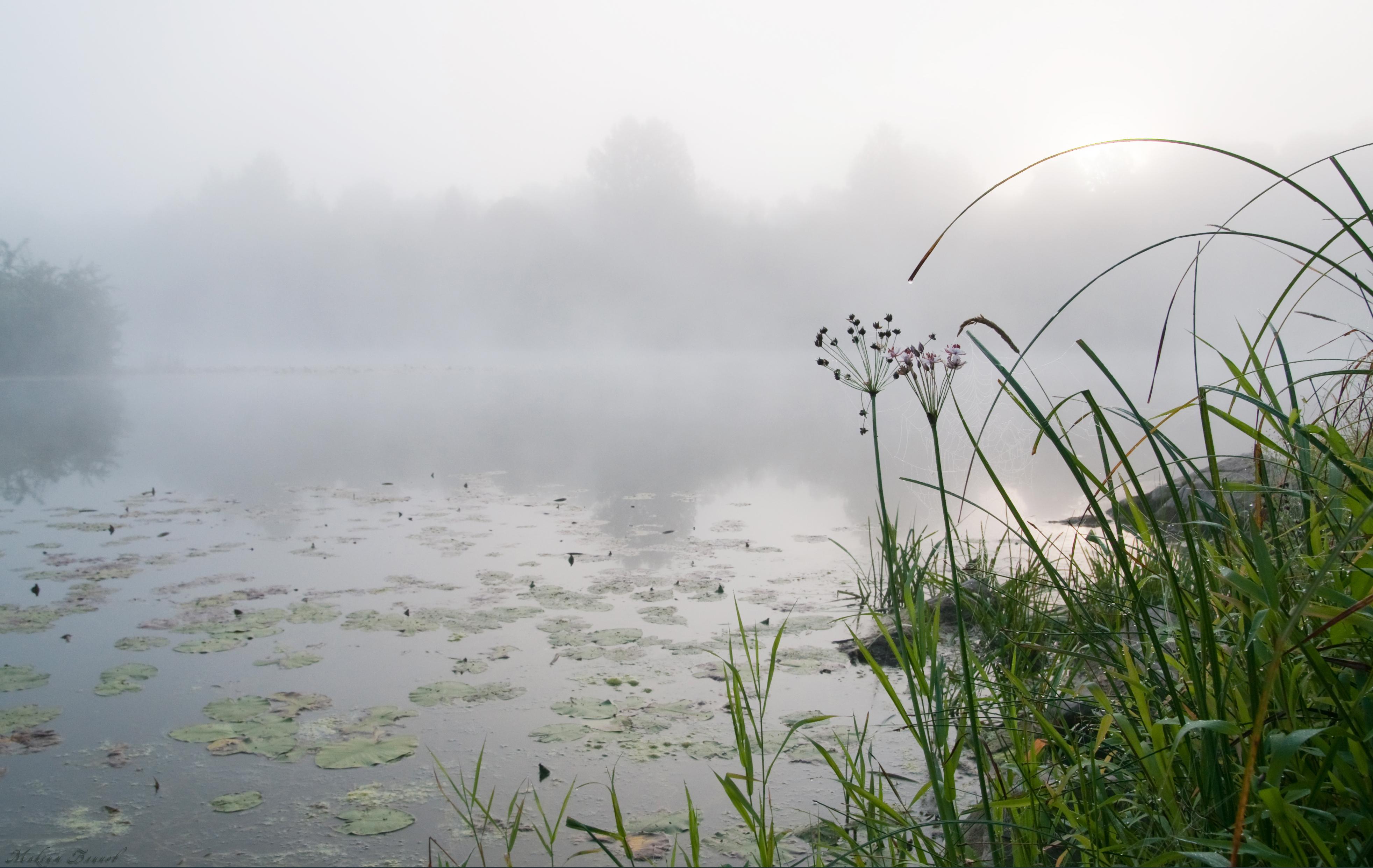 Восход на Чумыше