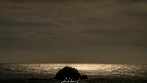 Seeking light