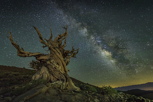 Alabama hills & Bristlecone pine forest Photography Tour (4D/3N)