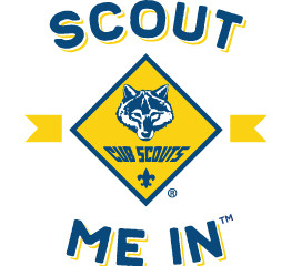 #ScoutMeIn says Count Me In