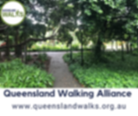 Queensland Walking Allianceresize.png