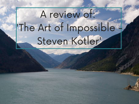 A review of 'The Art of Impossible – Steven Kotler'