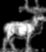 elk_clip_art_7086_edited.png