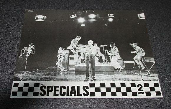 Dynamite image of the Ska legends live on stage