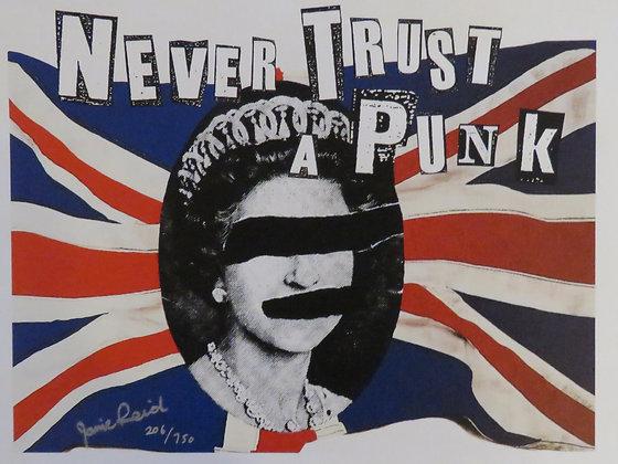 Never Trust a Punk