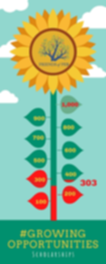 Seed to Flower Timeline Infographic (6).