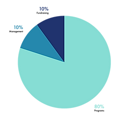 graph%20expenses_edited.png