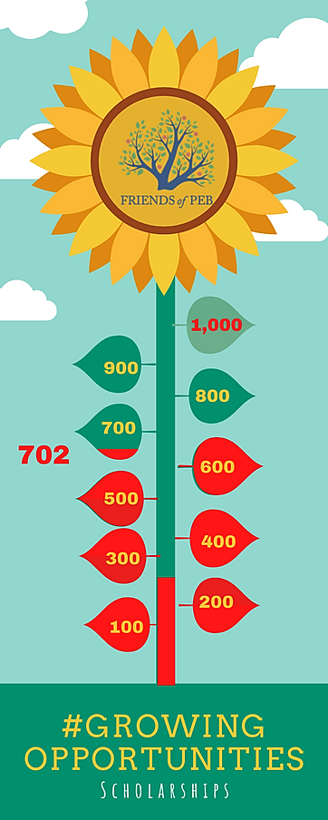 Seed to Flower Timeline Infographic (13)