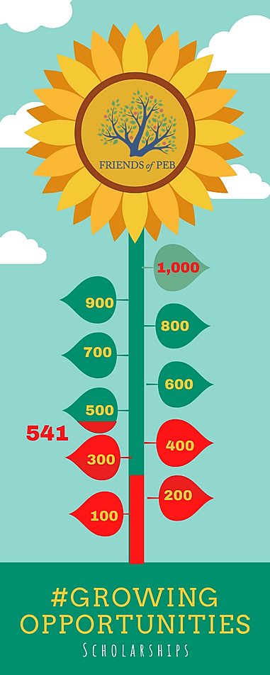 Seed to Flower Timeline Infographic (11)