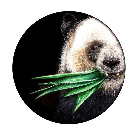 Panda | Giclée Print