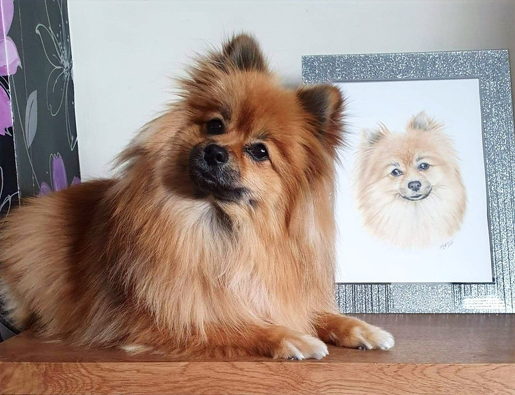 layce art review dog