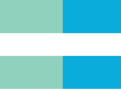 bsteps campaign logomark.jpg